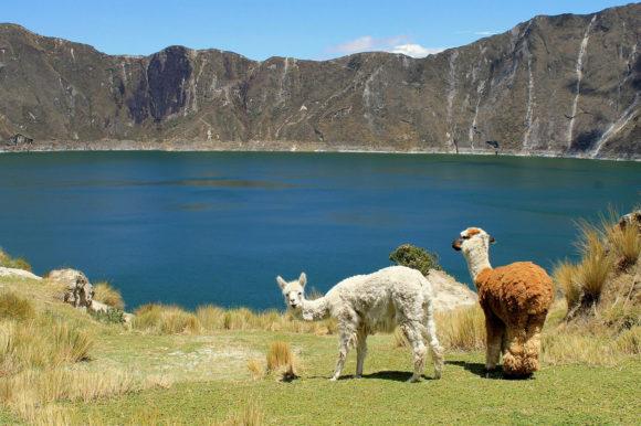 Llamas crater
