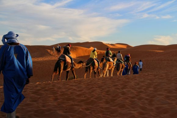 Camels carrying people over the Sahara Desert in Morocco