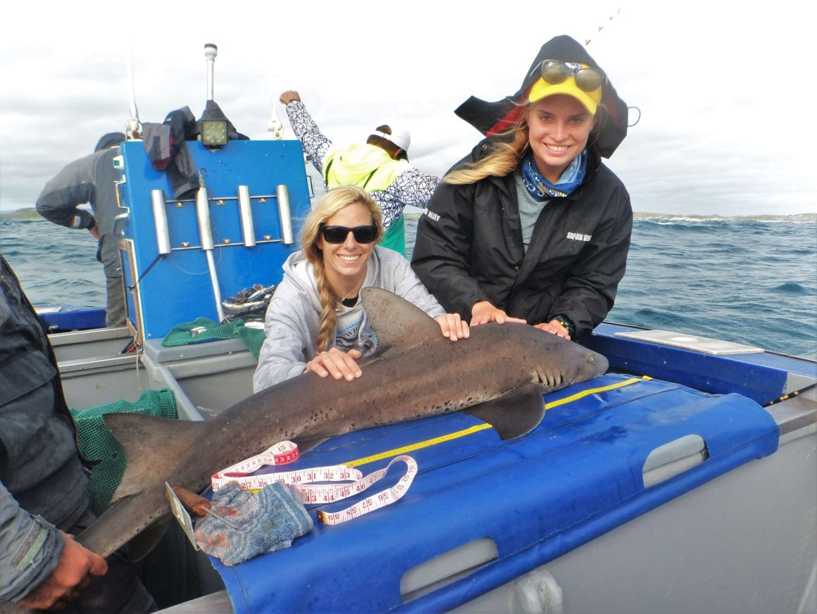 Shark & Marine Conservation Tour