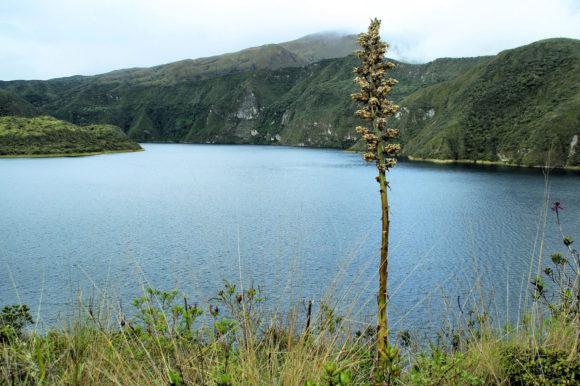 Cotopaxi crater lake Ecuador