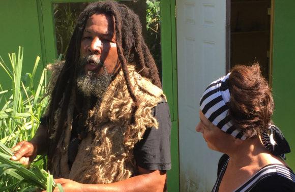 Rastafarian Culture Tour